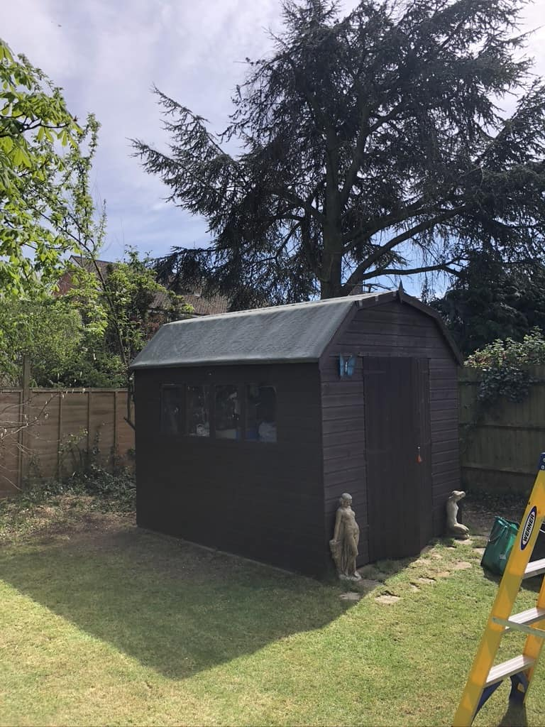 Shed painting with Ducks Back